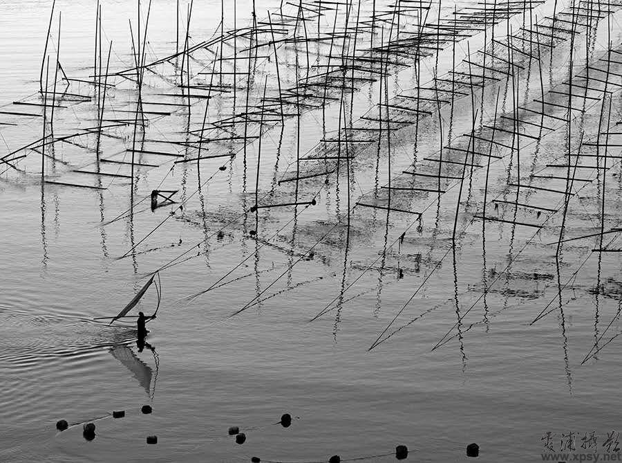 据霞浦摄影网了解到,2016年霞浦紫菜养殖开始进入筹备阶段。在霞浦摄影的东线,特别是在霞浦三沙的小皓、东壁、花竹等公路沿线,可以看到渔