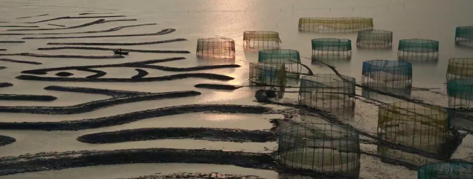 随着宁德七都滩涂的消失,很多摄影人都在怀念那硬朗的、粗犷有力的线条,特别是随着超涨潮落那若隐若现的的滩涂景致让人们欣喜若狂。时光不