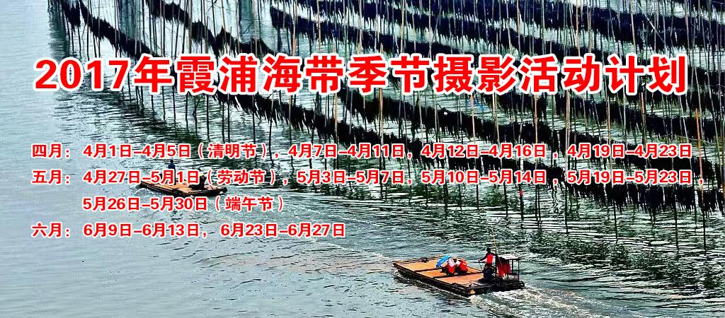 霞浦有着中国海带之乡的美称,漫长曲折的海岸线和得天独厚海域优势,培植出了优良的海带,也为摄影爱好者提供了难得的天然劳作场景。每