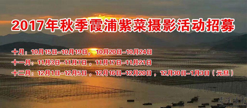 九月份开始,霞浦开始进入一年中除了春季海带收成外的另一劳作场景-紫菜上架和劳作,同时也掀开了霞浦一年中摄影的第二波高潮。霞浦一年
